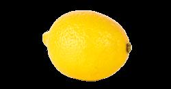Je baby is na 14 weken zwanger zo groot als een citroen