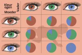 Kans kleur ogen baby op basis oogkleur ouders