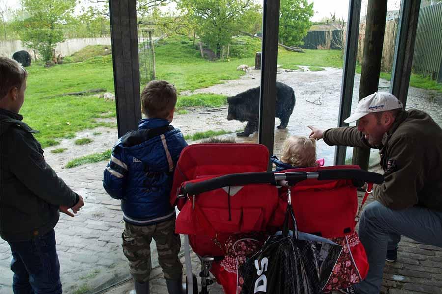 gezin bekijkt beren in Dierenrijk