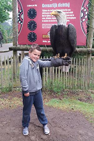 jongetje heeft roofvogel op arm in safaripark beekse bergen