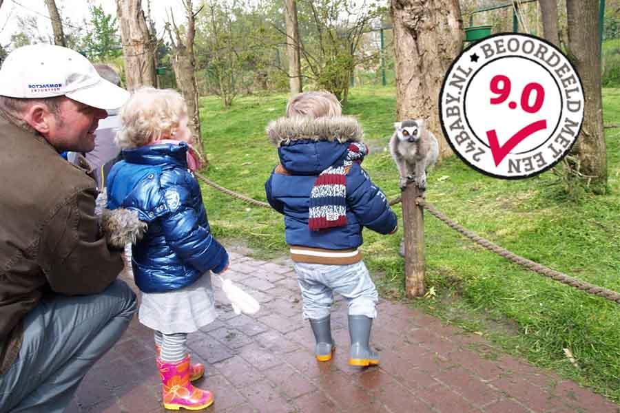 kleine kindjes en papa in Dierenrijk