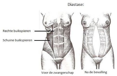 oefeningen na de bevalling
