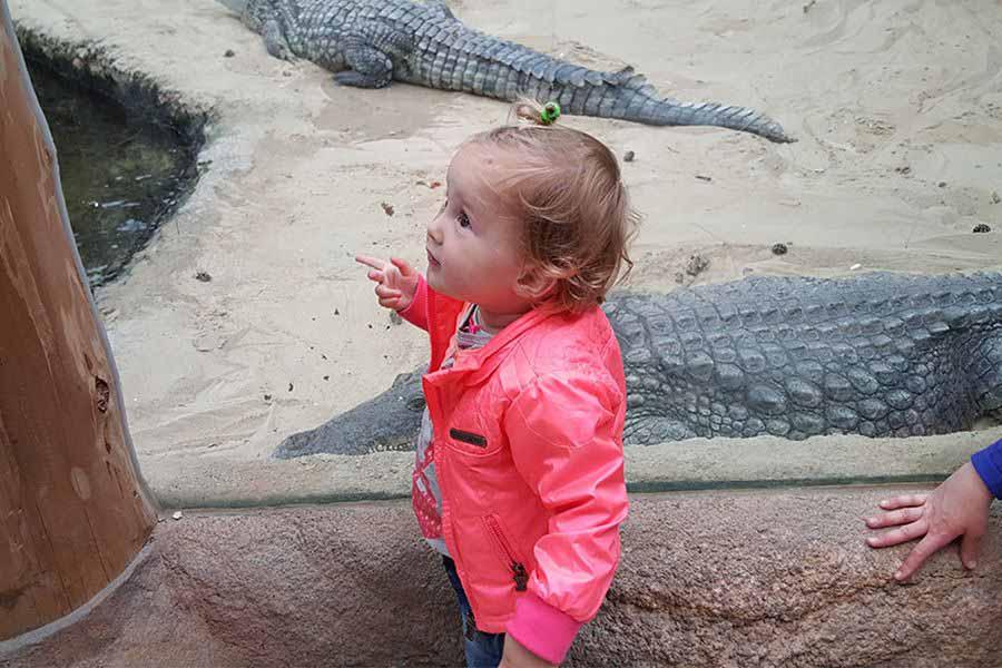 meisje-bij-de-krokodillen