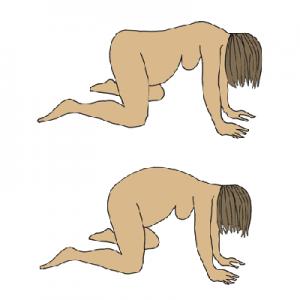 Bevallingshoudingen: op handen en voeten