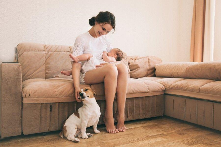 moeder met baby en hond