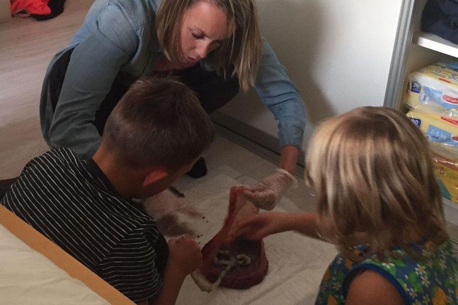 Vrouw laat placenta zien aan twee kindjes