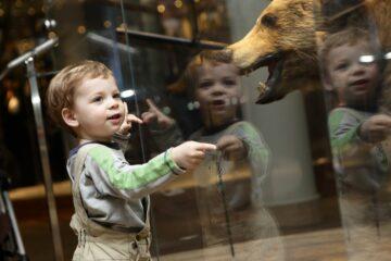 Peuter in natuurhistorisch kindermuseum